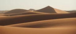 Wüste, Sand, Sahara, Sonne, Dune, Durst