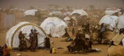 Flüchtlinge, Kenia, Dadaab, Afrika, Asyl, Armut, Wüste