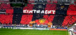 Fußball, Eintracht Frankfurt, Sport, Stadion, Zuschauer, Fans
