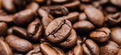 Kaffee, Bohne, Kaffeebohne, Getränk, Coffee, Kahve