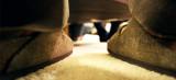 Birkenstock, das Kopftuch für die Füße