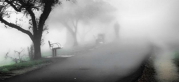 Park, Nebel, Gewalt, Mysteriös, Mann, Parkbank