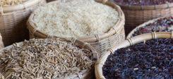 Reis, Nahrung, Hunger, Armut, Lebensmittel, Fairtrade, Handel