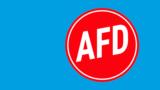 AfD-Politiker sollen Ausschuss-Vorsitz verlieren