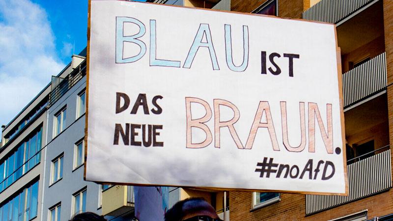 afd, noafd, demonstration, rechtsextremismus, blau, braun