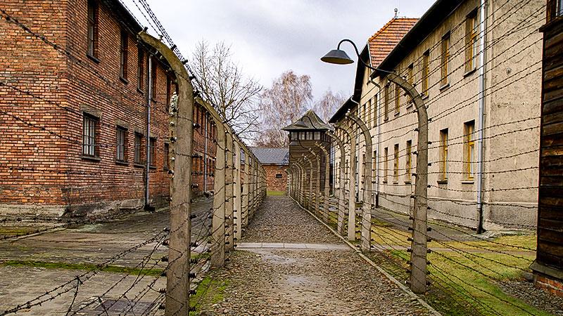 Auschwitz, Stacheldraht, Konzentrationslager, KZ, Juden, Völkermord, Holocaust, Nationalsozialismus
