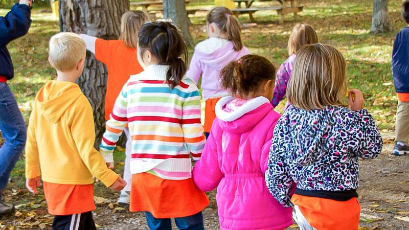 Kinder, Kindergarten, Spaziergang, Wald, Freunde